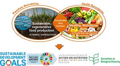 Sustainable Nutrition: Challenging the way we grow and eat food