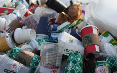 Pandemic and Plastic – the heavy toll on the environment